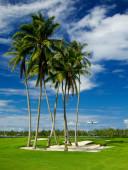 moorea-golf