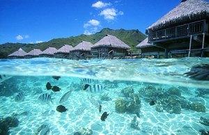 sheraton-moorea-bungalow-overwater-2