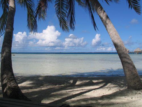 spiaggia-manihi-pearl