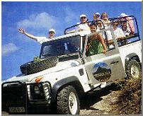 moorea-safari
