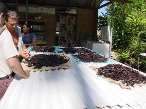 vaniglia-di-tahiti