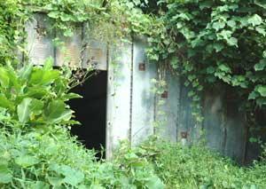 bunker-nella-foresta